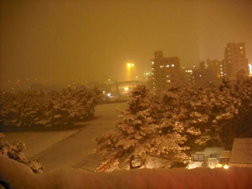 冬好きにはたまらんよ。